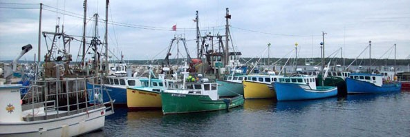 Panel To Examine Lobster Prices
